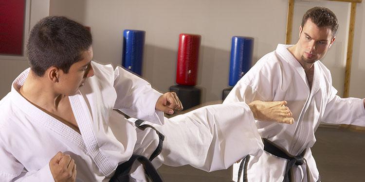 Martial arts board break